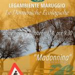 """Le Domeniche Ecologiche di LEGAMBIENTE MARUGGIO, domenica 26 ottobre saremo in località """"Madonnina"""""""