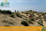 """Avviato il progetto """"VIVEREleDUNE"""" con la prima attività volontaria di pulizia delle Dune di Campomarino"""