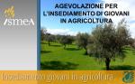 Approvato il regolamento attuativo delle agevolazioni per l'insediamento di Giovani in Agricoltura. Premio di € 70.000 per l'insediamento e possibilità di accedere ad un mutuo