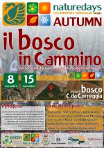 """Vivi l'autunno con i """"naturedays"""" di Legambiente Maruggio con l'iniziativa """"il Bosco in Cammino"""", percorso didattico per bambini e famiglie alla scoperta del bosco!"""