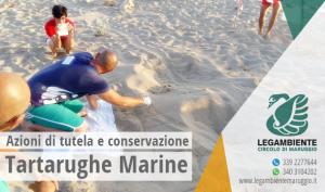 L'Unione Europea avvia il Progetto LIFE15NAT/HR/000997 – Azioni di tutela e conservazione della tartaruga marina. Interessata anche l'area di nidificazione di Campomarino di Maruggio (Ta)