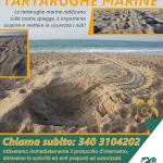 Hai visto tracce di TARTARUGHE MARINE sulla tua spiaggia? Segnalalo subito chiamando il numero 340 3104202 – Campagna di Sensibilizzazione promossa dalla LEGAMBIENTE di Maruggio (Ta)