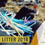 """BEACH LITTER 2018 fase 1 di 4 spiaggia """"Marchese"""" – Seconda indagine e monitoraggio sui rifiuti spiaggiati a Campomarino di Maruggio, a cura dei volontari della Legambiente e del Servizio Civile del Comune di Maruggio"""