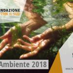 Fondazione CON IL SUD promuove la quarta edizione del Bando Ambiente invitando le organizzazioni del Terzo settore del sud Italia, a presentare progetti esemplari per la prevenzione e riduzione dei rischi ambientali all'interno dei Parchi e delle Aree naturali protette