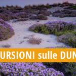 ESCURSIONI sulle DUNE tutti i MARTEDI' di agosto 2018 lungo i percorsi naturalistici delle dune di Campomarino, a cura dei volontari della LEGAMBIENTE di Maruggio (Ta)