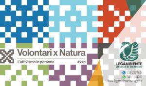 """""""Volontari x Natura"""" al via il progetto di Legambiente che promuove la cittadinanza attiva e l'ecovolontariato, progetto che vedrà anche la partecipazione del circolo di Maruggio"""