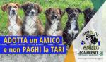 Adotta un amico a quattro zampe e non paghi la TARI, iniziativa dell'Amministrazione del Comune di Maruggio (Ta) per incentivare l'adozione dei tanti cani ospitati nei canili di competenza.