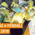 """Si è svolta sabato 25 maggio 2019 a Campomarino di Maruggio (Ta) la campagna di volontariato ambientale con l'iniziativa nazionale """"Spiagge e Fondali Puliti"""" a cura dell'APS Legambiente di Maruggio"""