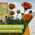 """Si è svolta l'iniziativa """"M'illumino di Meno 2020″ a Campomarino di Maruggio (Ta) venerdì 6 marzo con la pulizia e piantumazione di piante e fiori presso il Piazzale Italia, a cura dell'APS Legambiente Maruggio"""