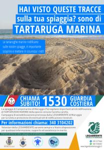 Hai visto tracce di TARTARUGHE MARINE sulla tua spiaggia? Segnalalo subito chiamando la Guardia Costiera al numero 1530 – Campagna di sensibilizzazione ambientale promossa dalla LEGAMBIENTE di Maruggio (Ta)